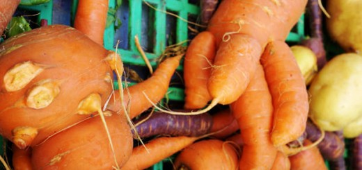 ugly_carrots-620x412
